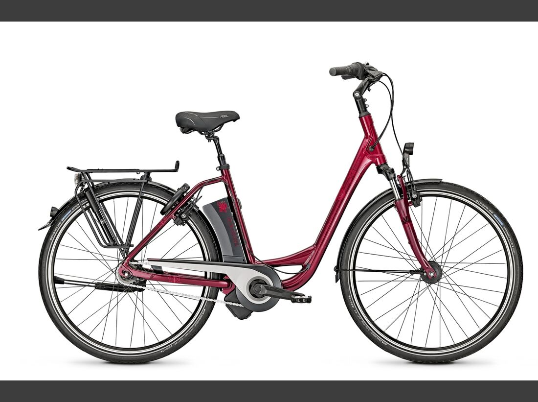 UB-Raleigh-Dover-Impulse-8r-HS-E-Bike-Neuheiten-2015 (jpg)